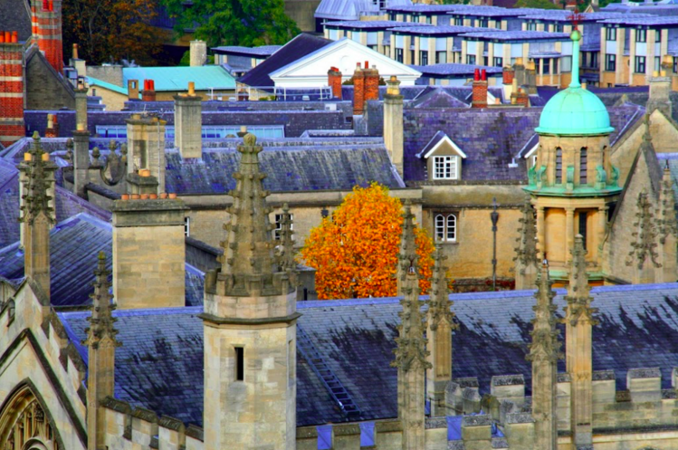Oxford is know as the city of spires but it has so much more to offer - a great nightlife, the best museums and some lovely walks in the parks and along the canals